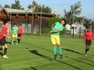 U18  Valence